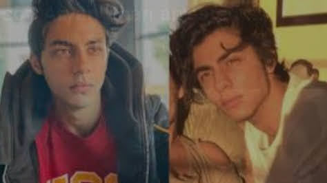 No drugs were found on Aryan Khan, he was just a guest: lawyer at court